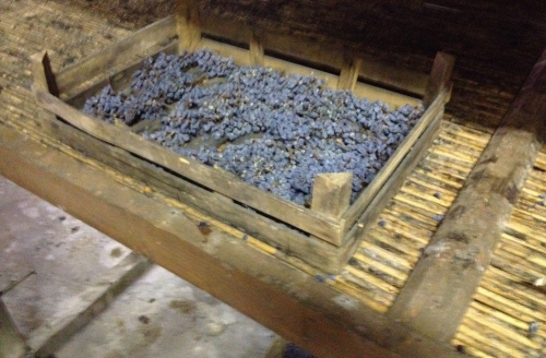 Dried grapes in the old wooden boxes